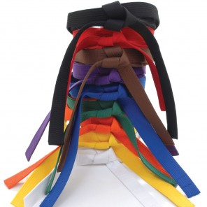 Martial Arts Rank Belt [ALL COLORS]