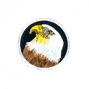 American Star Eagle Martial Arts Patch