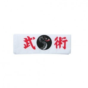 Martial Arts Dragon Headband
