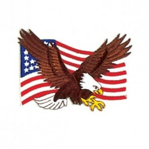 American Eagle Martial Arts Patch