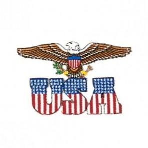 USA Eagle Martial Arts Patch