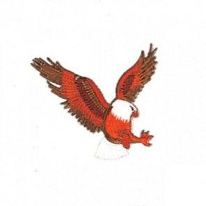 Eagle Martial Arts Patch