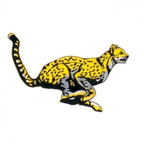 Leopard Martial Arts Patch