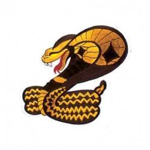 Cobra Martial Arts Patch