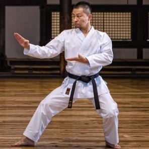 TOKAIDO LIGHTWEIGHT KUMITE GI - HATAYE NST 疾風